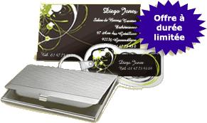 Vistaprint 500 Cartes De Visite Gratuites